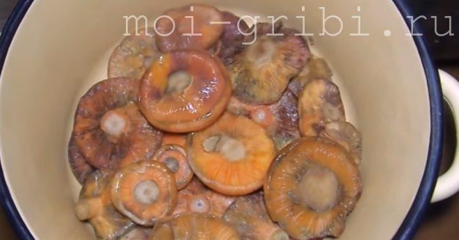 Холодная засолка грибочков
