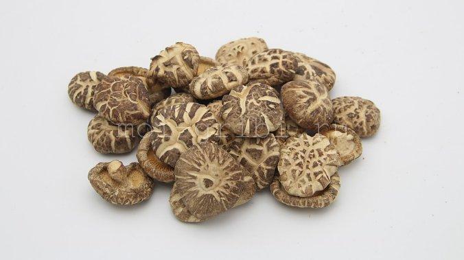 китайский гриб